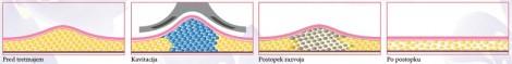 razvoj tkiva